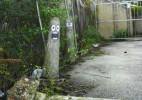 趣味有创意的街头涂鸦