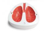 肺部样式的咳嗽感应烟灰缸