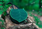 Leafling Bags 树叶创意背包