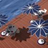 风光互补储能的创意遮阳伞