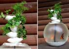 绿植与鱼儿共生的创意鱼缸(duckponics)