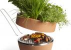 盆栽兼烤肉炉的Hot-pot BBQ