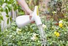 多功能创意双向浇水壶