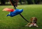 趣味超人创意狗狗垃圾袋