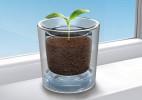 每一滴水都不浪费的创意花瓶