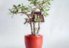 微型迷你树屋创意摄影艺术作品
