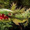 西瓜菠萝雕刻成的龙