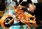 吃货的创意作品龙虾摩托车