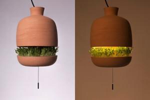 创意无处不在,吊灯上的小花园