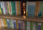 书架上的隐藏通道