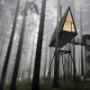 别树一帜的小树屋