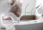 猫咪也用FaceID