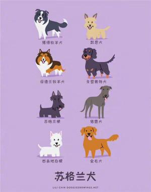 一组可爱的小狗图