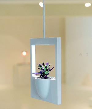 悬挂的pola花盆创意家居产品设计