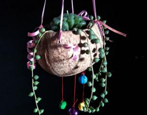 椰壳和铃铛制作波希米亚风多肉小花盆的做法