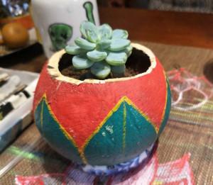 DYI手绘椰壳小盆栽,多肉花盆的做法