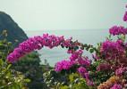 值得去旅行的意大利五渔村唯美图片