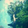 一棵很美很有意境的树的美图