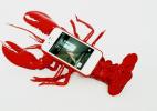 超屌龙虾手机套和鲸鱼手机套创意产品