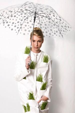 期盼下雨的长草外套