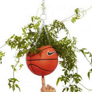 创意篮球花盆