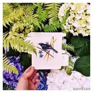 药品包装盒创作的小鸟艺术,背后还有个感人故事