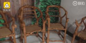 老人耗费17年时间种植出树椅子,8万一张舍不得卖
