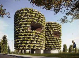 印度森林学校,每个阳台都种满植物,楼顶有跑到,地下有泳池