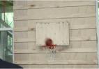 国外小伙发明了一个百发百中篮板,碰到板就能进篮