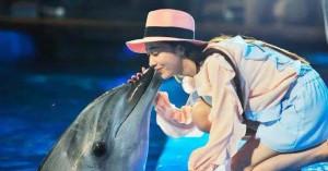 这条假冒海豚价值1.8亿 ,超级逼真