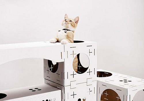 便携的宠物猫游乐园Poopy Cat创意设计