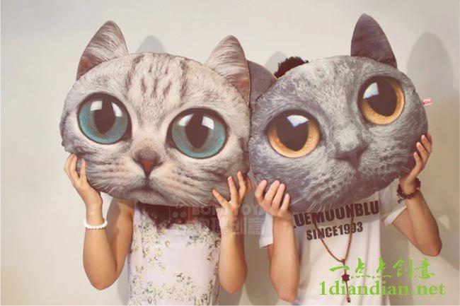 猫头抱枕送女友 拍照卖萌利器