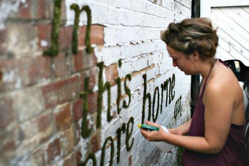 教你动手制作苔藓涂鸦