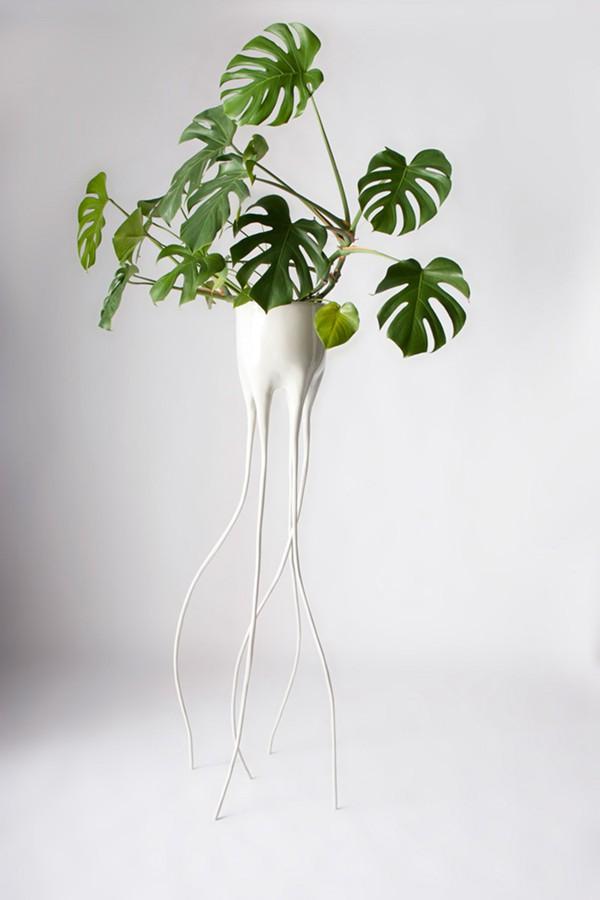 创意长腿花盆设计(Tim de Weerd)