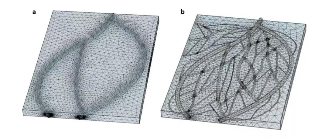 以色列研究人员利用3D打印出人造心脏