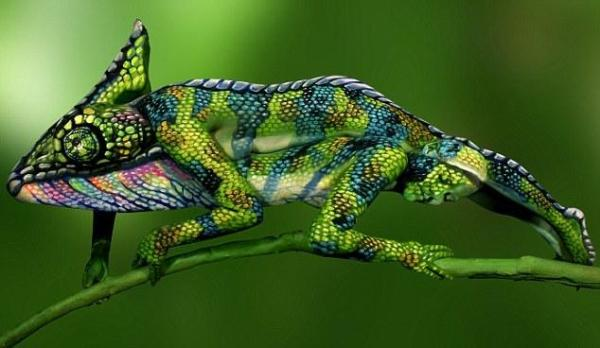 意大利艺术家人体彩绘 令人惊叹