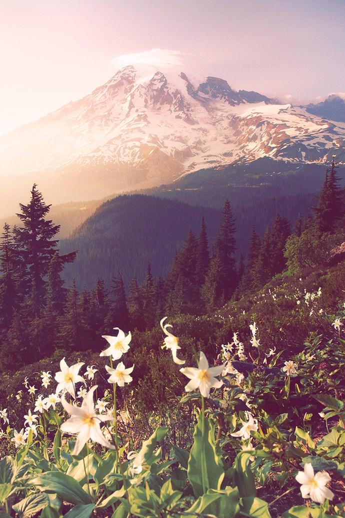 唯美自然风光美图图片