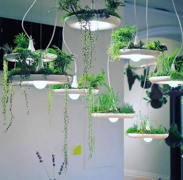 美观实用的盆栽吊灯