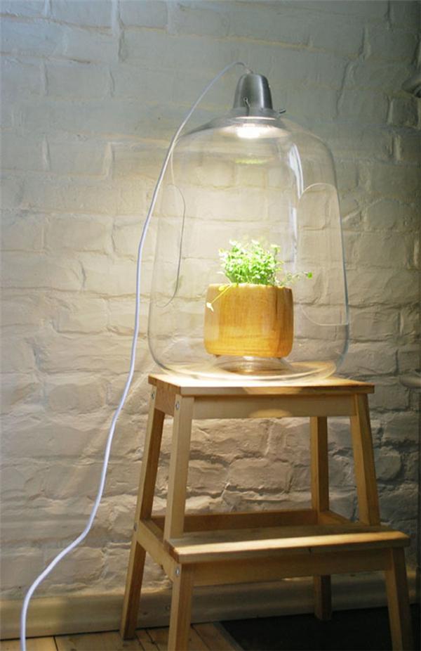优雅温室小吊灯